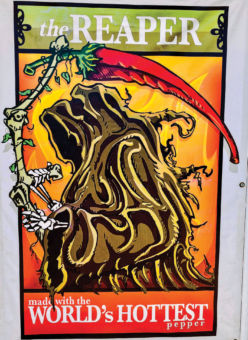 the reaper illustration made with the world's hottest pepper