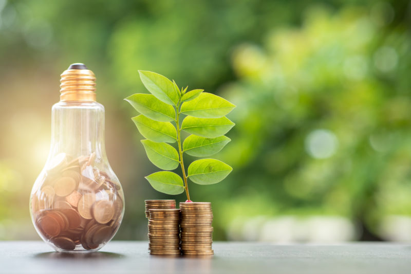 Energy saving. stacks of coins growing in light bulb and tree growing on stacks of coins and tree nature background. Saving, Natural energy and financial concept
