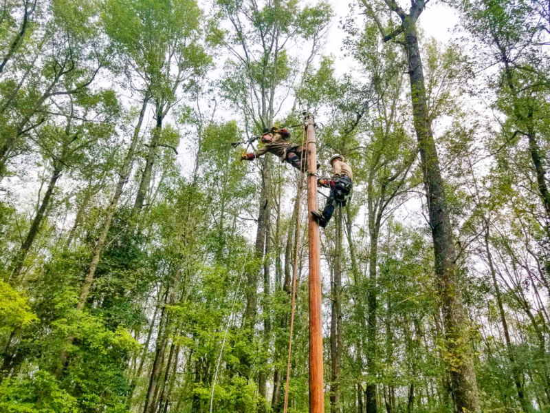 Justin and Caleb working on a powerline