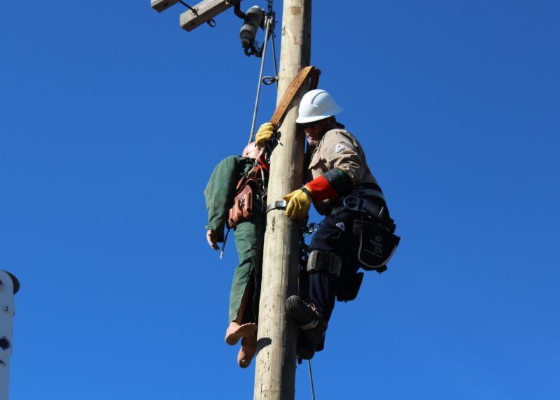 Roddy working on a powerline